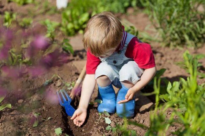 FÅ MED BARNA: La barna dyrke sine favorittgrønsaker.