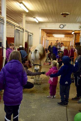 HELSTE PÅ: Her fekk ungane helse på hestane og ri.