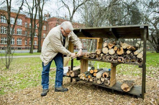 ROMSLEG: Lars Ove Hansen lagar insekthotell med plass til hundrevis av bebuarar – men roar med at du kjem langt med berre ein bunt hole strå med ståltråd rundt.