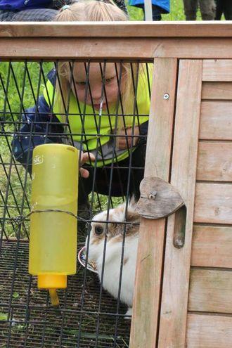 MAT: Borna fekk også mate kanina på garden.