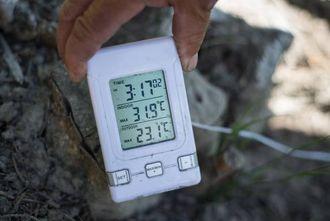 LUNT: Gradestokken viser at temperaturen har vore oppe i nesten 32 grader i skyggen den dagen.