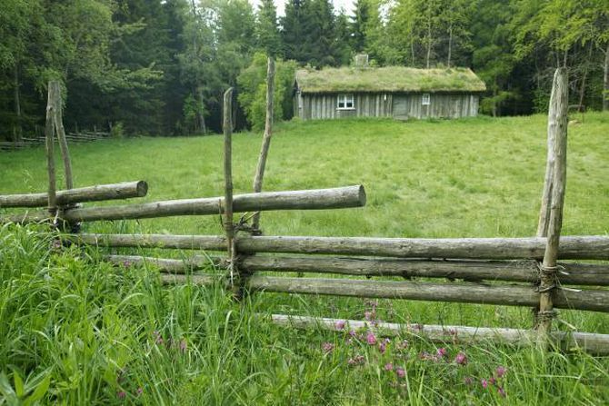 TRADISJONSRIKT: Skigarden er ein av dei eldste gjerdetypane i Norge, og lever godt også i dag.