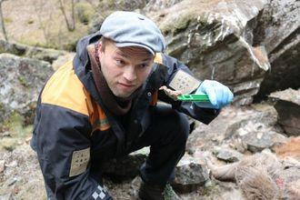 ALVORLEG: Viltforvaltar Knut Fredrik Øi, her under prøvetaking av hjort med tanke på skrantesjuke. Arkiv
