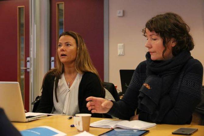 LURTE IKKJE MDG: Gruppeleiar for Arbeidarpartiet, Marie Helene Hollevik Brandsdal, avviser at dei lurte Miljøpartiet Dei Grøne inn i eit samarbeid.