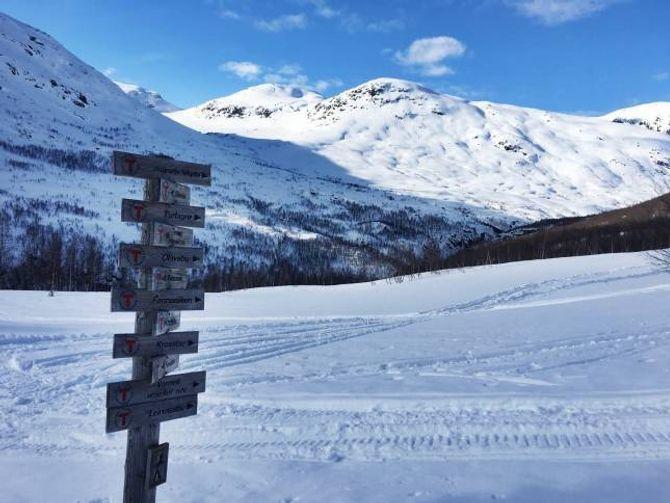 GODE TILHØVE: Biletet er frå helga før påske, men meldingane går ut på framleis svært gode skitilhøve ved Skogadalsbøen.