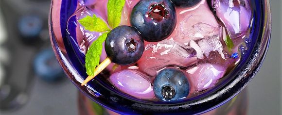 Dark Blueberry Mojito