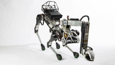 Google-eieren kvitter seg med to robot-pionérer