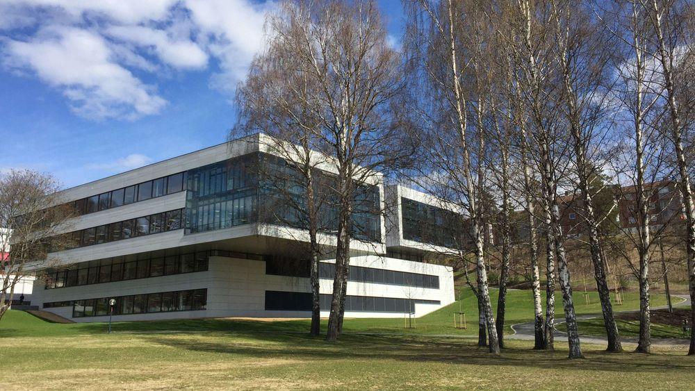I DNV GL sine kontorlokaler på Høvik i Bærum er det ikke nødvendig å klatre oppover, for å gjøre utvikle karriereløpet sitt.