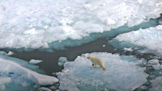 Vil ha forbud mot tungolje i Arktis - kan ramme 6000 fartøy