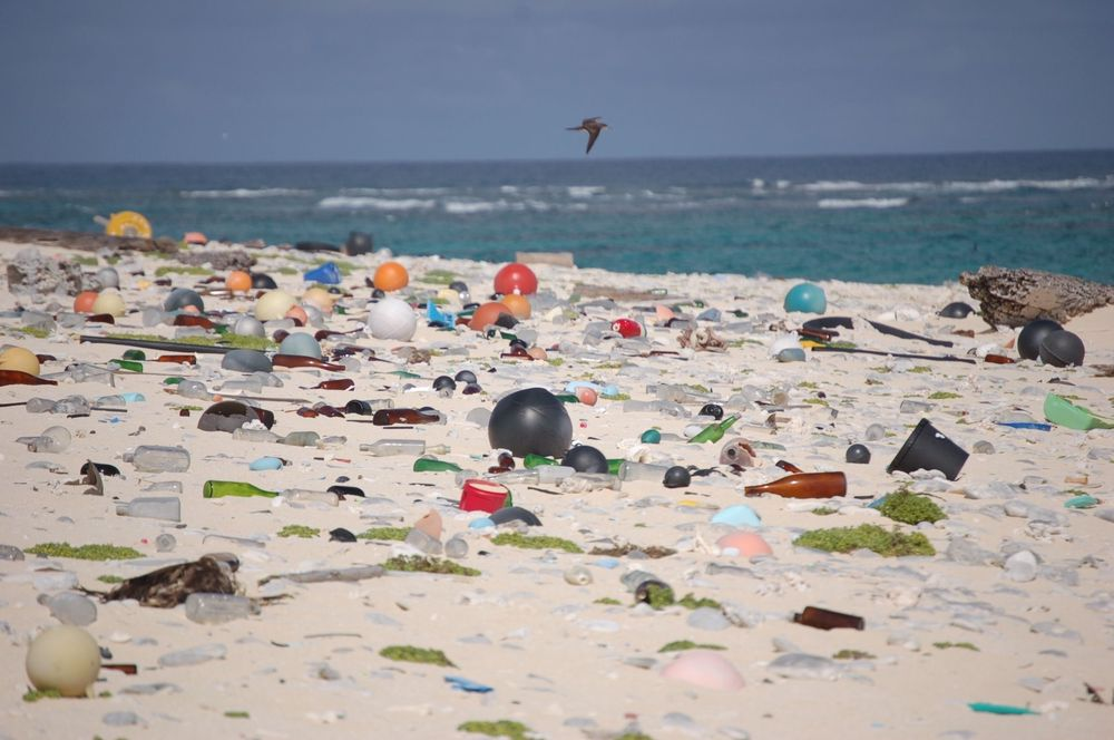 Plast og annet søppel vasket opp på en strand på øya  Laysan i vilreservatet Hawaiian Islands National Wildlife Refuge.