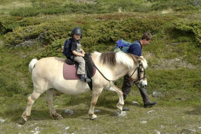 HESTEDILLA: Mange aktørar tilbyr korte eller lange rideturar i fjellet for ryttarar på ulikt nivå.