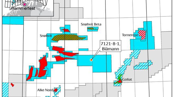 Lite gassfunn i kontroversiell Barentshav-brønn