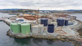 Flere slike anlegg: Biokraft AS sitt anlegg på Skogn i Trøndelag er et av rundt 40 biogassanlegg i Norge. Anlegget settes i drift i disse dager. Bransjen mener det er rom for å bygge nesten dobbelt så mange slike anlegg de neste ti årene.