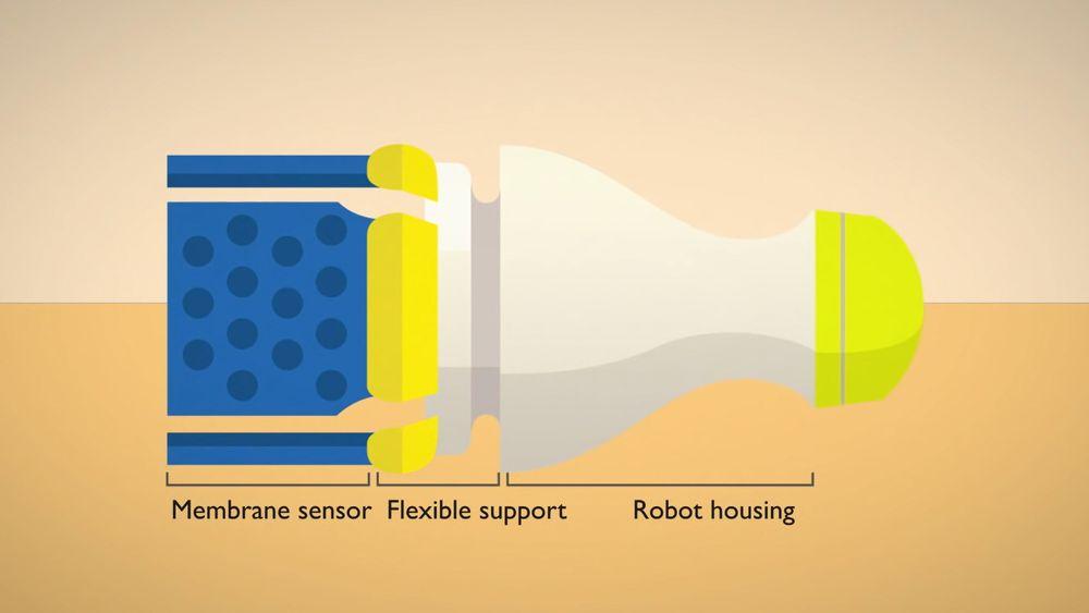 Gjennom et ni år langt forskningsprosjekt har en gruppe ved MIT laget en robot som sendes gjennom rør og oppdager lekkasjer.