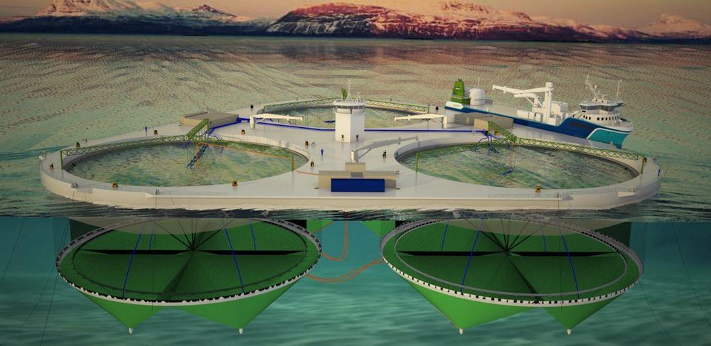 SØKNAD: Fjordmax er planlagt med en plattform med tre merder, hver på 200 meter i diameter. Lengde: 165 meter. Bredde: 153 meter. Integrete systemer for fôr, oppsamling av slam, død fisk samt pumping av sjøvann og tilsetting av oksygen