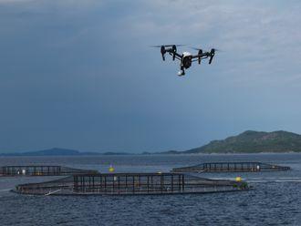 Drone inspiserer oppdrettsanlegg fra lufta. I Artifex-prosjektet er det meningen at den skal sendes opp fra og landes på en ubemannet overflatefarkost (USV).