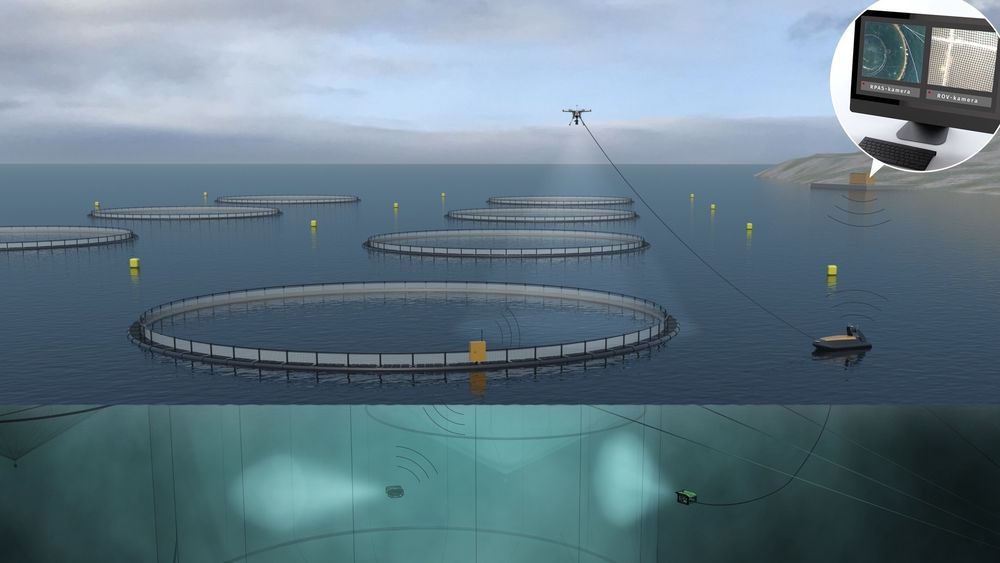Oppdrettsanlegg fjernstyrt fra land. Ubemannet overflatefartøy (USV) er plattform for drone og ROV (fjernstyrt undervannsfarkost).