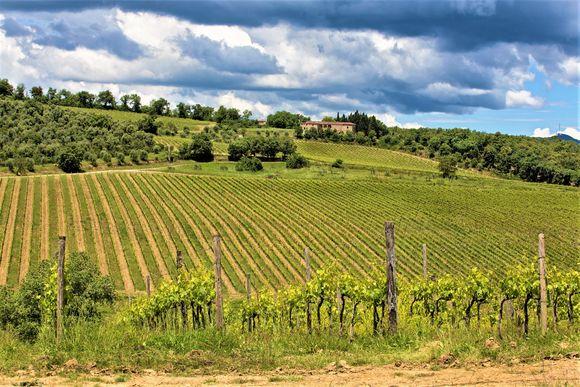Fra vinmarken Rancia kommerFèlsinas riserva som ikke er i salg i Norge akkurat nå.