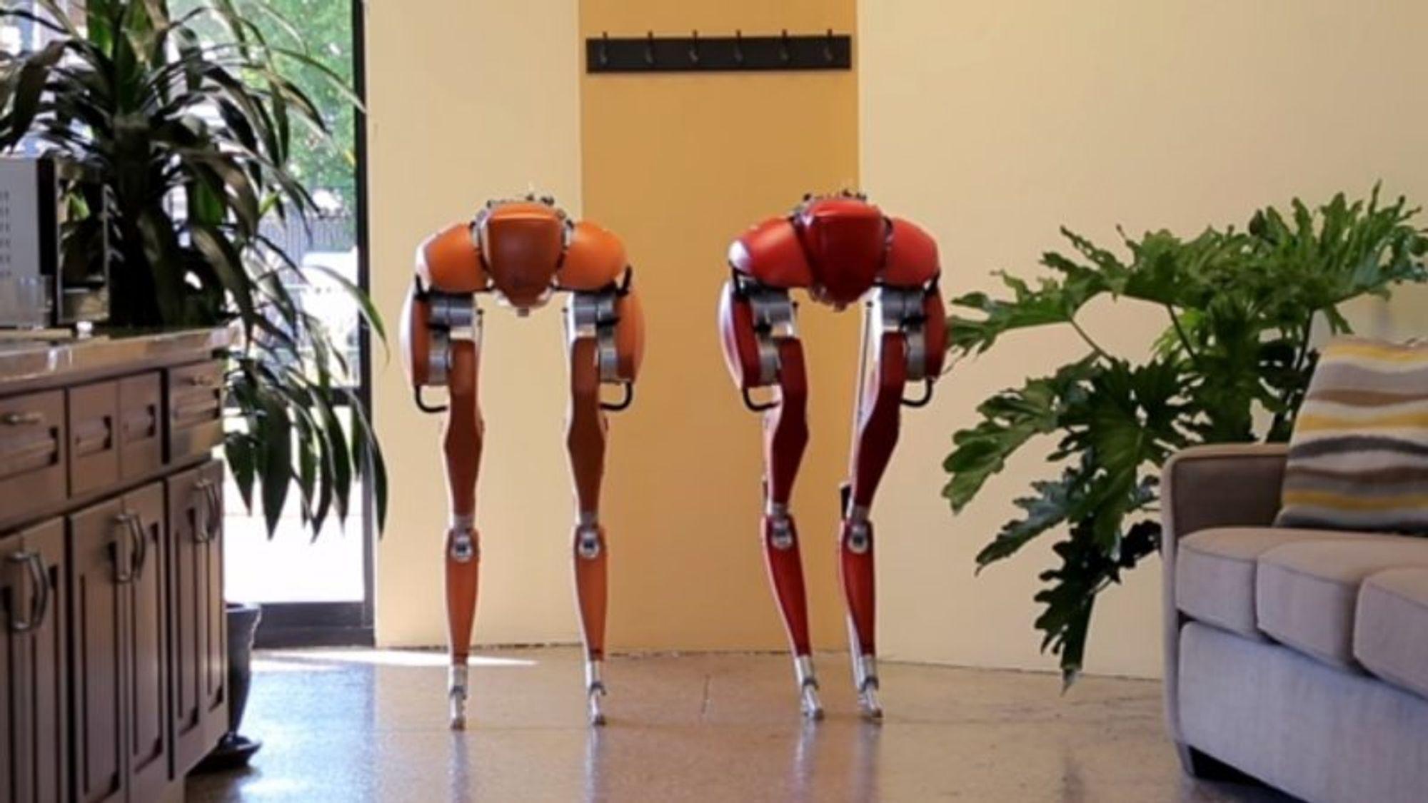 Et amerikansk robotfirma har gjort det sannsynlig at roboter verken bør rulle på hjul eller belter – de skal gå på to bein. En ny video viser hvor elegant dette kan gjennomføres.