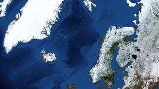 Rapport: Forsuringen av Norskehavet skjer raskere enn før