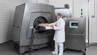 Skal finne de optimale kjøttstykkene ved å CT-scanne grisen