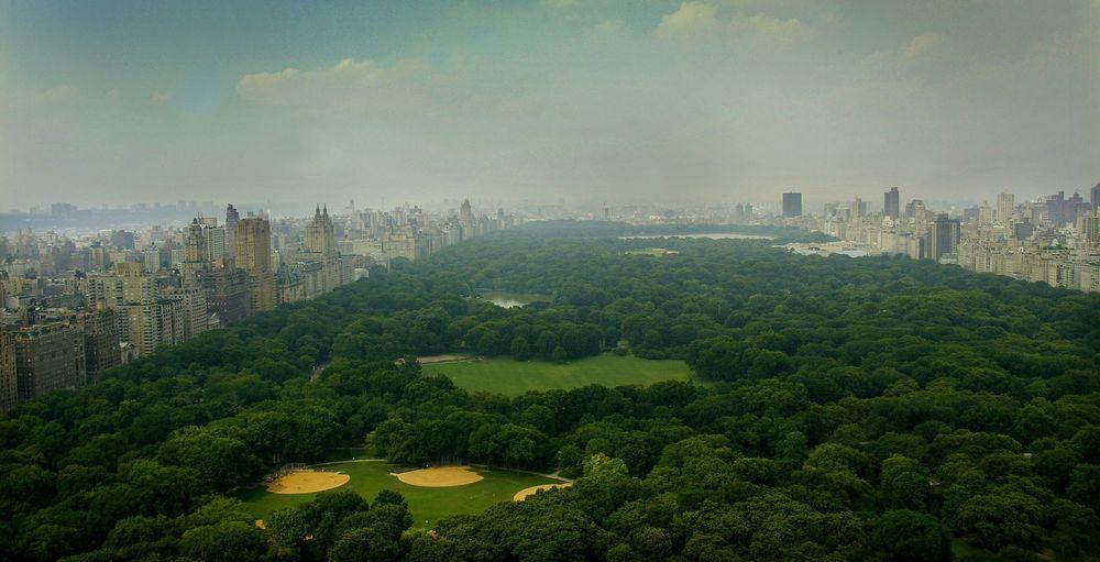 New Yorks Central Park er en av de mest kjente parkene i verden. Parken gjør det mulig for en rekke dyrearter å leve i et meget urbant område.