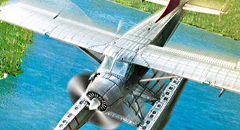 Vant du Flight Simulator X?