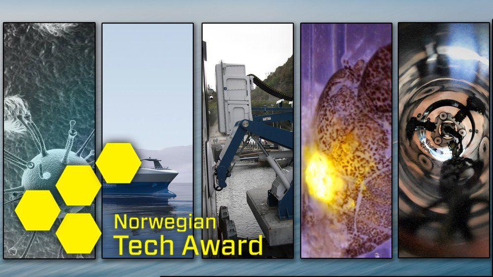 Midtveis i avstemmingsperioden leder Stingray Marine Solutions, fulgt av Thermo Fisher Scientific og Wärtsilä.