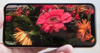 Bildekvaliteten og fargegjengivelsen på skjermen er suveren. Her viser skjermen et bilde vi har tatt selv med kameraet i telefonen.