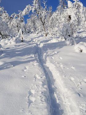VINTERIDYLL: Slik såg det ut då Terje Solheim frå Årdal tok turen til Bjødnaholten i helga.
