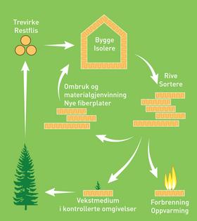 Trær tar opp og lagrer karbon når de vokser. Et 70 år gammelt grantre inneholder ca. 1.180 kg karbon som tilsvarer 4.300 kg CO2. Først når treet dør og råtner slippes CO2 gradvis ut igjen.
