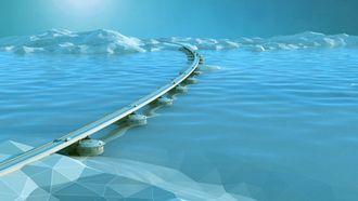 Bioway ønsker å kombinere byggingen av flytebruer med fiskeoppdrett.
