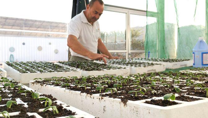 – Vi er nødt til å få mest mulig ut av hver eneste kvadratmeter, og hver eneste av de 1920 plantene våre, sier Frank Utsola.