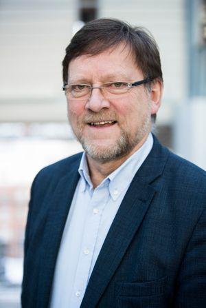 Associate Dean for EMME-programmet og professor ved Handelshøyskolen BI, Jon Lereim.