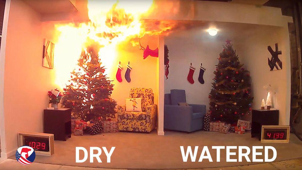 Er juletreet ikke vannet, kan det brenne mye lettere.