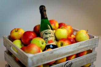 Egen musserende: TIl sommeren skal Hellesnes, som er mer entusiast på vin enn på øl, så og si smake sin egen medisin.