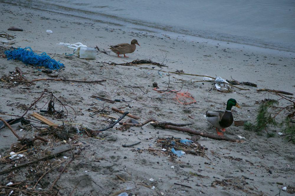Uidentifiserbar plast topper funnlistene. For øvrig kommer tau, isopor, drikkeflasker og drikkebokser høyt opp på funnlisten langs kysten.