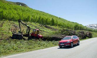 I juni og juli var det en veldig skogrydding på delstrekningen Varpe Bru-Smedalsosen.