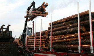 Lossing av tømmer er en viktig del av hverdagen i Rømskog Tømmertransport. Her leveres tømmer til Moelvens anlegg i Årjäng.