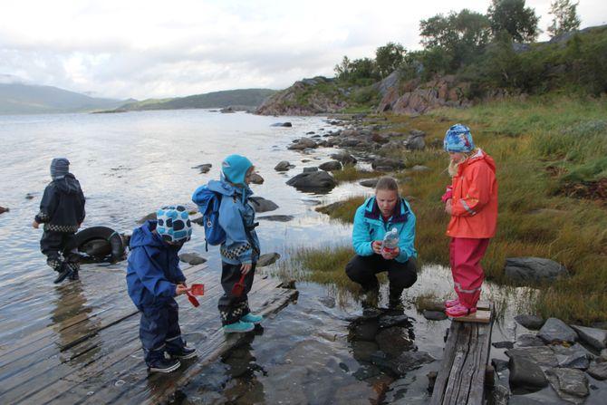 Det er Friluftslivets uke i Stemland gårdsbarnehage og turen går til fjæra for å hente sjøvann sammen med pedagogisk leder Julie Veigård.