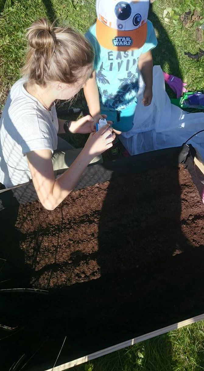 Barna planter gulrøtter og salat i plantekassa.