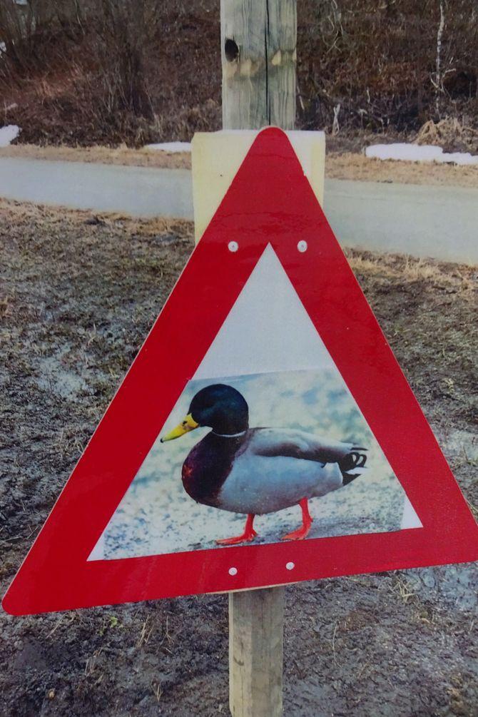 Skiltet viser tydelig at forbipasserende må kjøre forsiktig.
