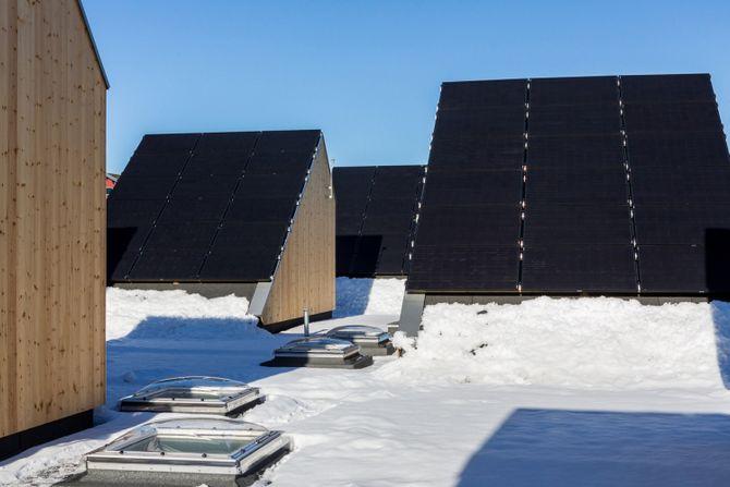 Totalt er det 300 kvadratmeter med solcellepanel på takene.