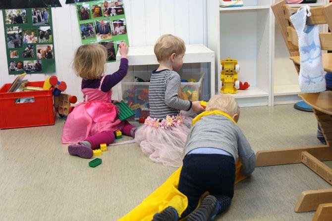 Daglig leder melder om at satsingen på 50 prosent barnehagelærere og prosessene med å rekruttere nye barnehagelærere, har vært gode.