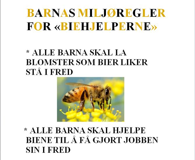 """Det er utarbeidet egne miljøregler for """"Biehjelperne"""" slik at de kan leve harmonisk sammen."""