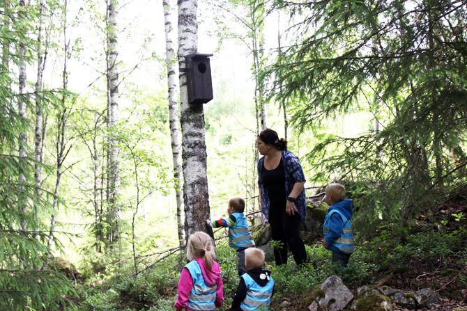 Barna og barnehagelærer Ingrid Bjørklund skraper en pinne mot trestammen for å se om det er ugle i uglekassa, men ingen ugle titter ut.