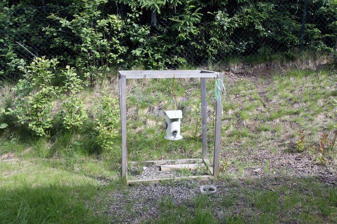 Barnehagen har laget sin egen foringsplass. Den har vært populær blant fugler og ekorn denne vinteren og våren.