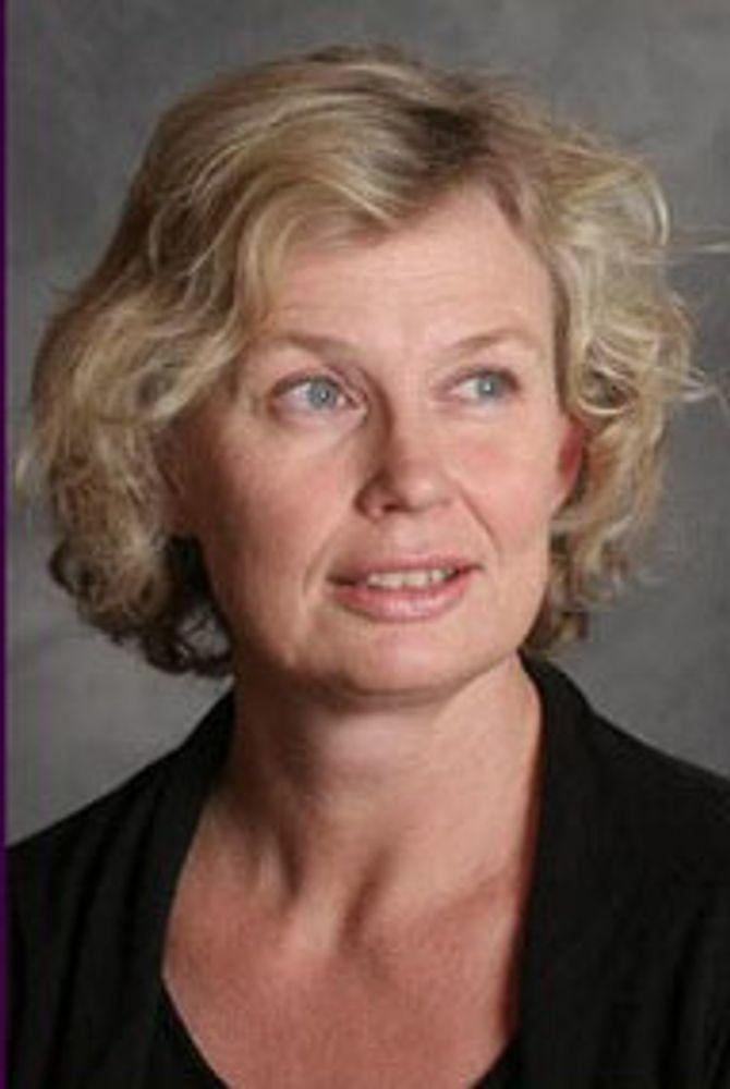 Førsteamanuensis Nina Rossholt arbeider ved Høgskolen i Oslo og Akershus.