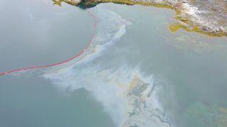 Forskning i Arktis: 6 faktorer hemmer naturens egen opprydning etter oljeforurensning