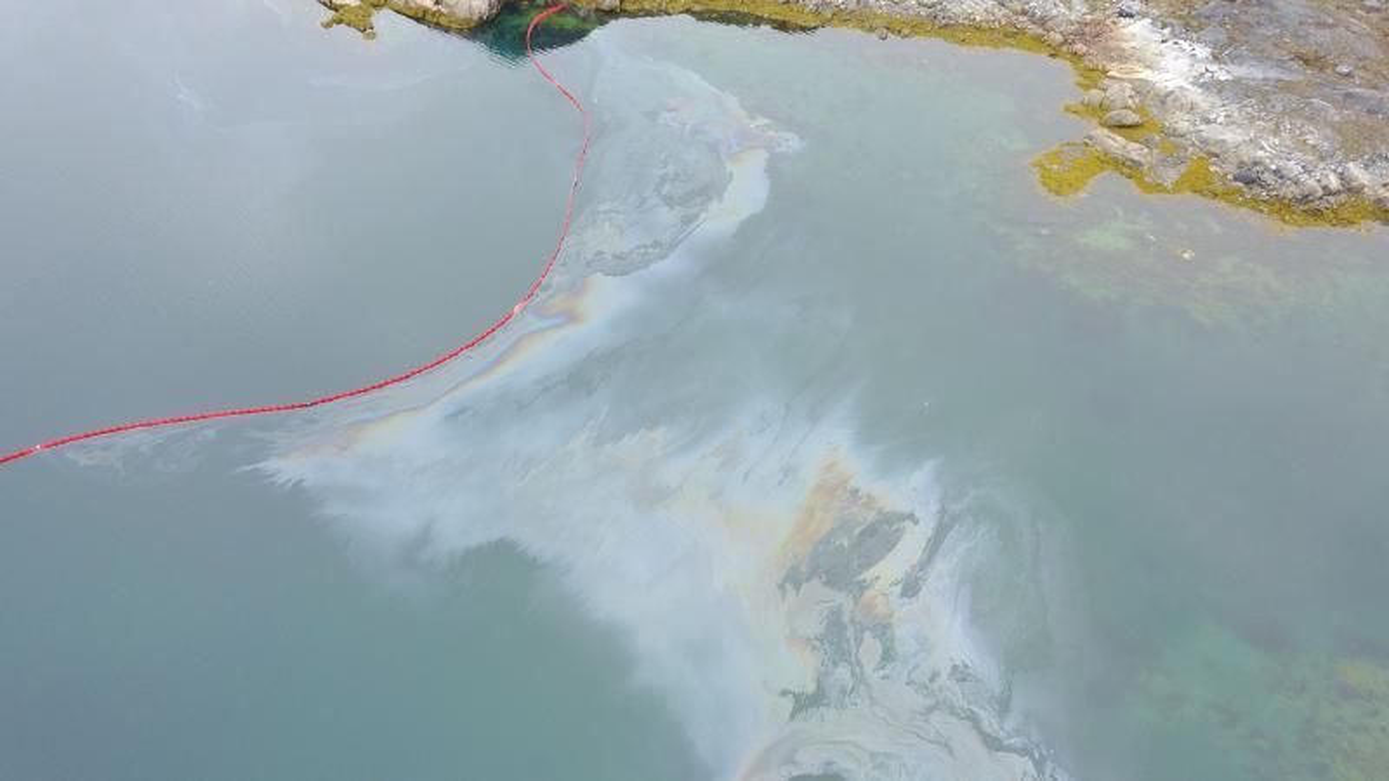 Sommeren 2017 utførte forskere fra Aarhus Universitet et eksperiment med oljeutslipp i et avgrenset område rett ved kysten i en liten grønlandsk bukt. Det inngikk som en del av et EU-prosjekt ved navn Grace, som Aarhus Universitet deltar i sammen med 11 andre partnere; primært nordiske forskningsinstitusjoner, samt den private forurensningsbekjempelses-bedriften Greenland Oil Spill Response.